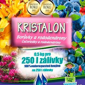 KRISTALON BORŮVKY A RODODENDRONY 0,5kg