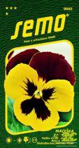 SEMO Maceška zahradní - Mistral S1 žluto červená 35s