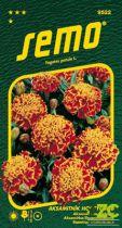 SEMO Aksamitník rozkladitý - Honeycomb (Super Hero Orange Flame) 30s
